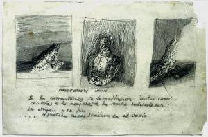 S/T. Carboncillo sobre papel 32 x 23 cm. Colección particular.